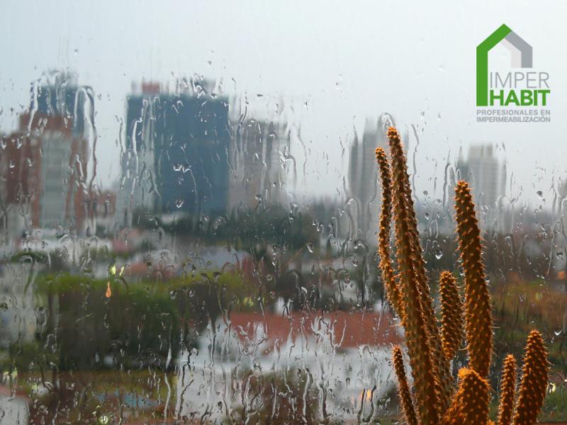 ¡Qué bonito es ver llover y no mojarse!